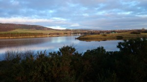 Lochore Meadows viewed from the Kelty side