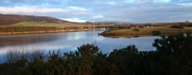 Fife Council agreed this week to on-going annual funding of £120,000 for additional staffing and future planning for Lochore Meadows Country Park as well […]